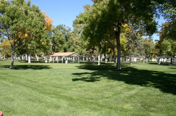 A large grassy area of a cemetery